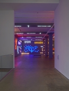 'Agnosia, an Illuminated Ontology' Sean Kelly Gallery