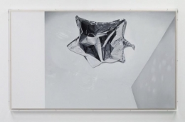 James White Sean Kelly Gallery
