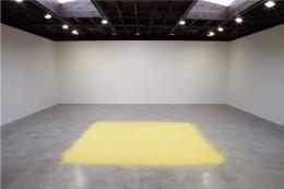 Wolfgang Laib Sean Kelly Gallery
