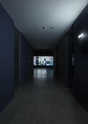 Disruptive Desires Sean Kelly Gallery