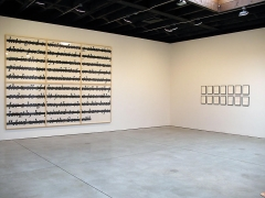 Cancelled, Erased & Removed Sean Kelly Gallery