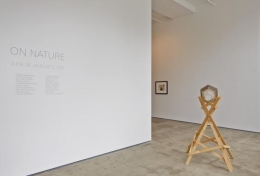 On Nature Sean Kelly Gallery