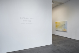 Installation view of Hugo McCloud: Burdened at Sean Kelly, New York