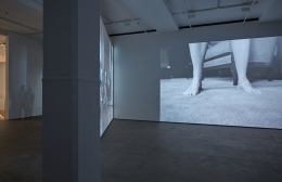 David Claerbout Sean Kelly Gallery