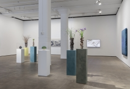 Installation view ofAbstract by Natureat Sean Kelly, New York, June 28 - August 2, 2019
