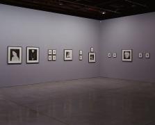 Robert Mapplethorpe Andy Warhol Sean Kelly Gallery