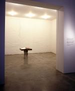 Laurie Anderson Sean Kelly Gallery