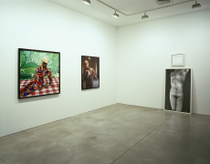 Role Exchange Sean Kelly Gallery