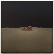 Deanna Thompson, Desert House 2011 #7