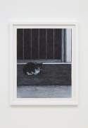 Willie Birch, Cat on Porch, 2009