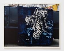 Justine Kurland, Tigers on Cesar Chavez, 2011