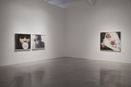 "Installation view of ""Liza Ryan: Rare Bloom"" at Kayne Griffin Corcoran, Los Angeles"
