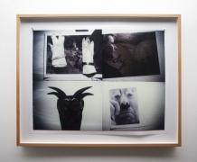 Michel Auder, Cindy, Kippy, the Devil and my Gloves