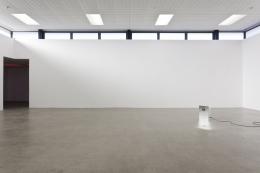 Dane Mitchell, Artspace New Zealand