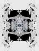 Iñigo Manglano Ovalle, Inigo Manglano Ovalle, Christopher Grimes Gallery