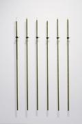 Dane Mitchell, Dunedin Public Art Gallery