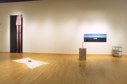 Amnesia, USF Contemporary Art Museum