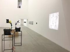 Juliao Sarmento, CIAJG, Christopher Grimes Gallery