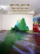 Katharina Grosse, Christopher Grimes Gallery