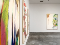 Katharina Grosse, Christopher Grimes Gallery