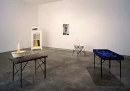 David Ireland, Christopher Grimes Gallery