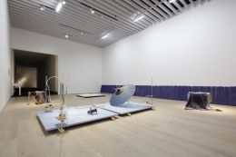 Dane Mitchell, Mori Art Museum