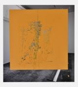 Carlos Bunga, Christopher Grimes Gallery