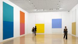 Olivier Mosset, Musee d'Art Contemporain de Lyon