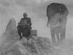 Matthew on Termite Mound and Mak, Zimbabwe, 2020