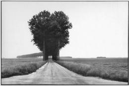 Brie, France, June 1968, 11 x 14 Silver Gelatin Photograph