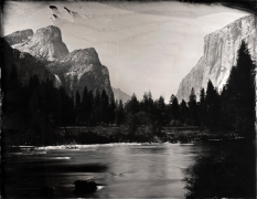 Valley View, Yosemite, Unique Collodion Wet Plate: please contact the gallery for details