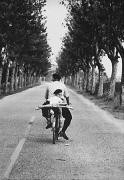 Provence, France, 1955, 20 x 16 Silver Gelatin Photograph
