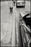 5th Avenue, 1988 (Plate 20), Combined Edition of 15 Photographs: