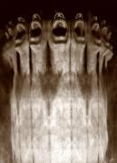 Anamorphosis, Untitled #0808998, 2008, 36-1/4 x 28-1/8 Silver Gelatin Photograph, Ed. 7