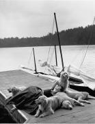 Linda Evangelista, Camp Longwood, Adirondack Park, NY, 1994 (96156-199-1), Silver Gelatin Photograph