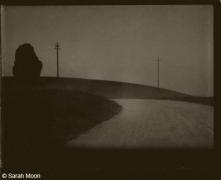Toscane 1, 2003, 15-3/4 x 19-1/2 Toned Silver Gelatin Photograh, Ed. 20