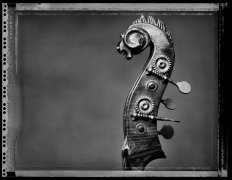 Charles Mingus's Bass, New York, NY, 1995, 16 x 20 inches, Silver Gelatin Photograph, Ed. of 25