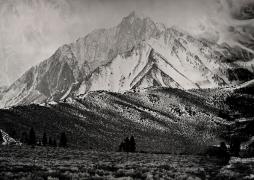 Mt. Morrison, Unique Collodion Wet Plate: please contact the gallery for details