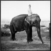 Kate Moss on Elephant, British Vogue, 1993