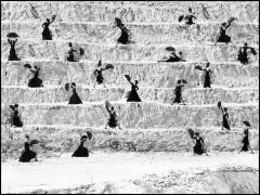 Estudio de Baile Alicia Marquez, Cantera, Outside of Sevilla, Spain, 2007