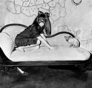 Selma Blair and Sphinx, 2005, Silver Gelatin Photograph