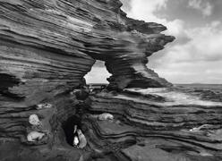 Sea Lions, Galapagos 2004, 16 x 20 inches, Silver Gelatin Photograph