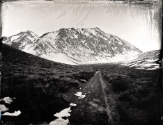 McGee Creek, Unique Collodion Wet Plate: please contact the gallery for details