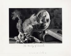 The Vanity of Animals, 2004, 11 x 14 Silver Gelatin Photograph, Ed. 25