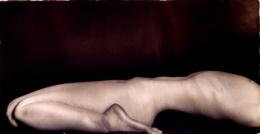 Silhouette, Untitled #9811327, 1998, 20 x 40 Silver Gelatin Photograph, Copper, and Plexiglass, Ed. 10