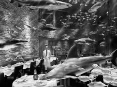 Restaurant Underwater, 2008, Archival Pigment Print