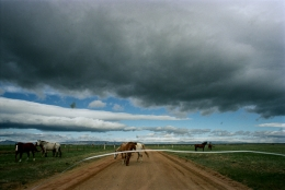 South of Laramie, Wyoming, May, 2005, 20 x 24 Archival Pigment Print, Edition 25