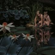 Secret Garden #01, 2001, 47 x 47 Digital C Print, Ed. 5