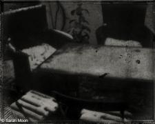 Le Jardin Gele, 2011, 15-3/4 x 19-1/2 Toned Silver Gelatin Photograh, Ed. 20