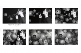 The Universe of Universes, 1998, (6) 5 x 7 Silver Gelatin Photographs, Ed. 25